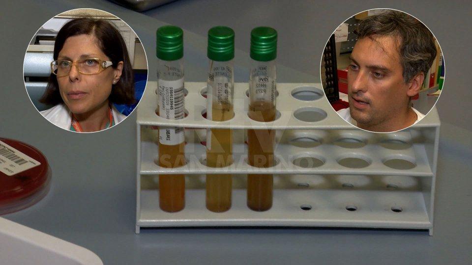 Le voci di Anna Chiara Piscaglia (Gastroenterologa ISS) e Emanuele Cappella (Medicina Trasfusionale e Patologia Clinica ISS)