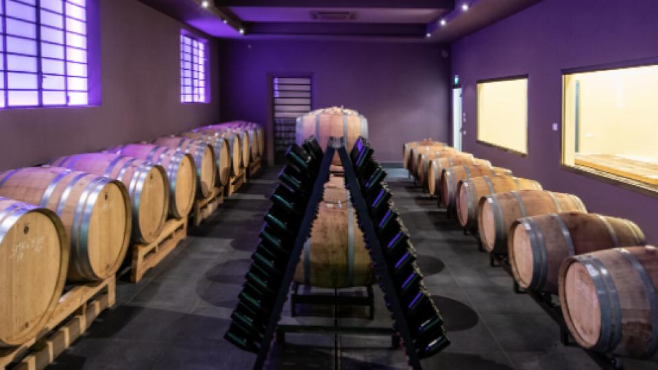 Cantina San Marino: 4.120 euro il ricavato dalla vendita di quasi 3.000 bottiglie di vino