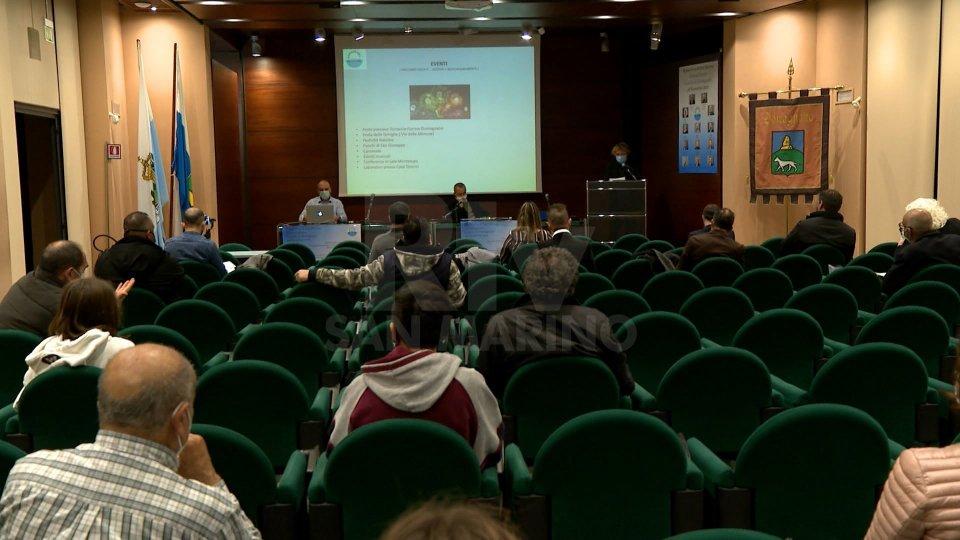 """La lista """"Domagnano al centro"""" punta su viabilità, sicurezza e valorizzazione del patrimonio culturale"""