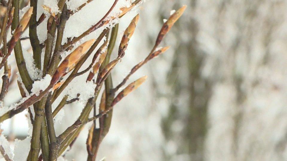 Da martedì brusco calo delle temperature; possibile neve fino a quote collinari