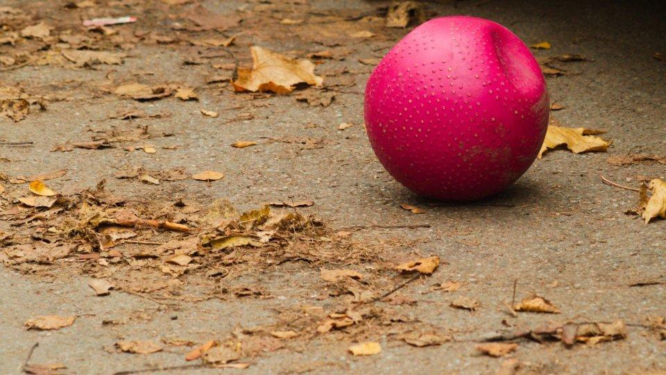 Una palla per bambini (@pixabay)