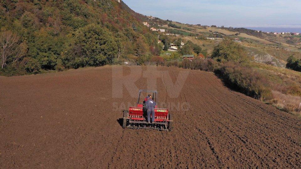 Eventi estremi: già 1 miliardo di danni per l'agricoltura italiana
