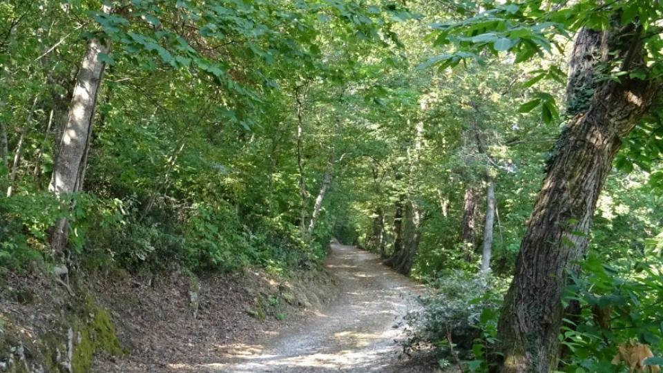RallyLegend: due ventenni si perdono nei boschi di Fiorentino