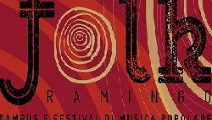 Ramingo Folk Festival