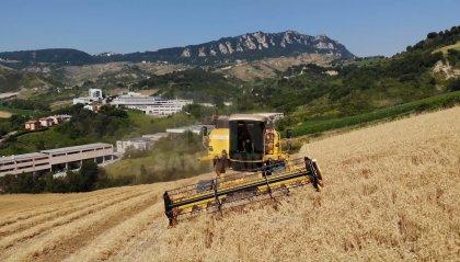 San Marino: l'agricoltura punta sul bio, dai vigneti al verde pubblico