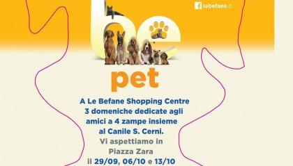 PET: parliamo di cani a Rimini