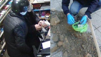 Misano: rapinavano piccole attività armati di scacciacani, arrestati