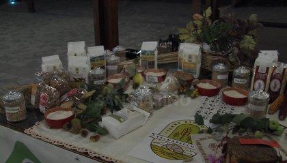 """L'Università Contadina celebra il Comune di Novafeltria nella prima serata di """"Davéra"""""""