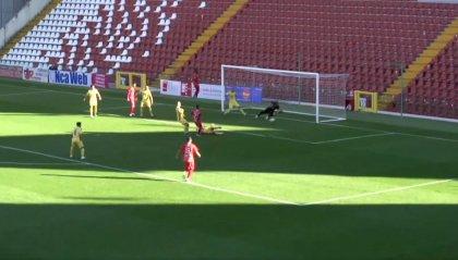Serie C: la Triestina riprende la marcia con la vittoria sulla Fermana Finisce 3-1