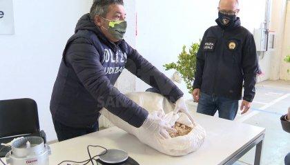 Colpo anti-droga della Polizia Locale di Rimini: sequestrati 22 chili di stupefacenti