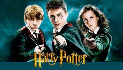 Il primo Harry Potter: Un autentico incubo