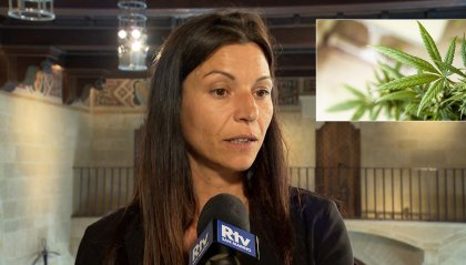 Cannabis terapeutica: già numerosi investitori potenziali